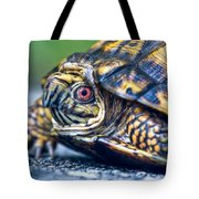 Box Turtle 2 Tote Bag
