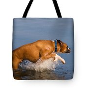 Boxer Playing In Water Tote Bag