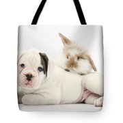 Boxer Puppy And Young Fluffy Rabbit Tote Bag