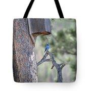 Boy Blue Tote Bag