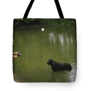 Boy Fishing In A Pond With A Black Tote Bag