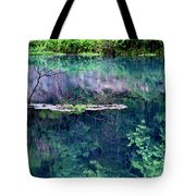 Branch And Reflections At Alley Spring State Park Tote Bag