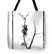 Branch Of Dried Out Flowers. Tote Bag