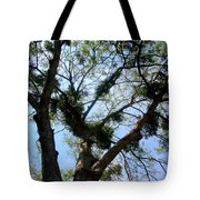 Branched Out Tote Bag