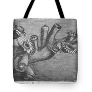 Branching Coral Tote Bag