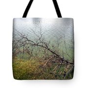 Branchs Over The Waters Edge 2001 Tote Bag