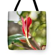 Brand New Sprout Tote Bag