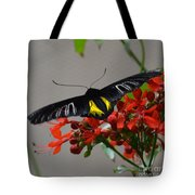 Brazilian Moth Tote Bag