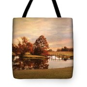 Brian's Bridge Tote Bag by Jai Johnson