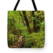 Bridge To A Fairytale Tote Bag