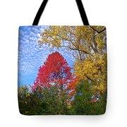 Bright Autumn Color Tote Bag