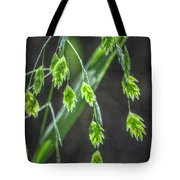 Bright Baby Leaves  Tote Bag