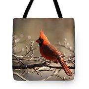 Bright Bold - Cardinal Tote Bag