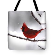 Bright In The Snow - Cardinal Tote Bag