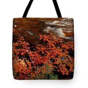 Bright Leaves At Swift River Tote Bag