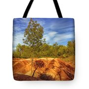 Bright Light On The Badlands Tote Bag