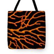 Bright Orange Coral Tote Bag