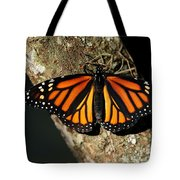 Bright Orange Monarch Butterfly Tote Bag