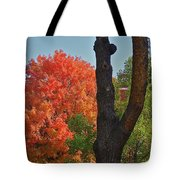 Brillant Tote Bag