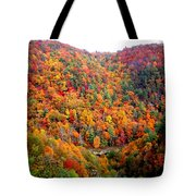 Brilliant Color Trees Tote Bag