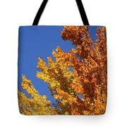 Brilliant Fall Color And Deep Blue Sky Tote Bag