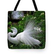 Brilliant Feathers Tote Bag