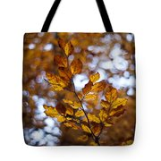 Brilliant Leaves Tote Bag