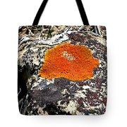 Brilliant Orange Lichen Tote Bag