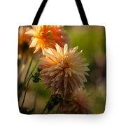 Brilliant Sunlight Tote Bag