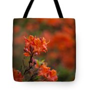 Brilliantly Rouge Tote Bag