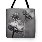 Bristle Thistle In Black And White Tote Bag
