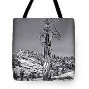Bristlecone Pine - High Sierra Tote Bag