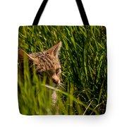 British Wild Cat Tote Bag