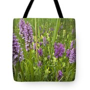 Broad-leaved Marsh Orchid Dactylorhiza Tote Bag