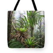 Bromeliads And Tree Ferns  Tote Bag by Cyril Ruoso