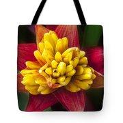 Bromiliad Blossom Tote Bag