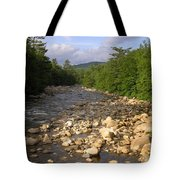 Brook 1 Tote Bag