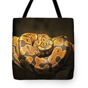 Brown And Black Snake Tote Bag