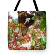 Brown And Yellow Butterfly Tote Bag