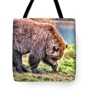 Brown Bear 201 Tote Bag