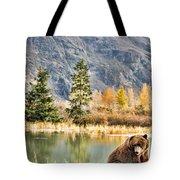 Brown Bear 206 Tote Bag