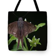 Brown Butterfly Dorantes Longtail Tote Bag