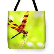 Brown Dragon Tote Bag