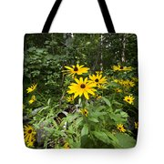 Brown-eyed Susan In The Woods Tote Bag by Gary Eason