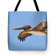 Brown Pelican In High Flight Tote Bag
