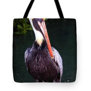 Brown Pelican Islamorada Tote Bag