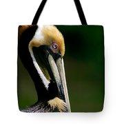 Brown Pelican Profile Tote Bag