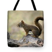 Brown Squirrel In Spokane Tote Bag