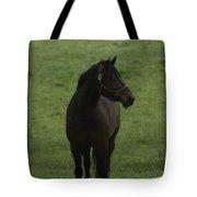Bryzgalov Tote Bag