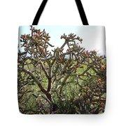 Buchorn Cholla Tote Bag